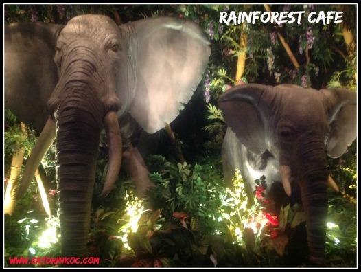 rainforest_elephants