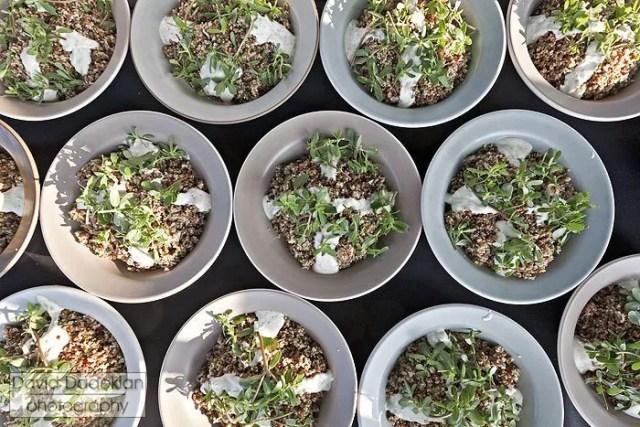 Cool salad of RI grains & Eva's Garden herbs and purslane with Narragansett Creamery yogurt tzatiki