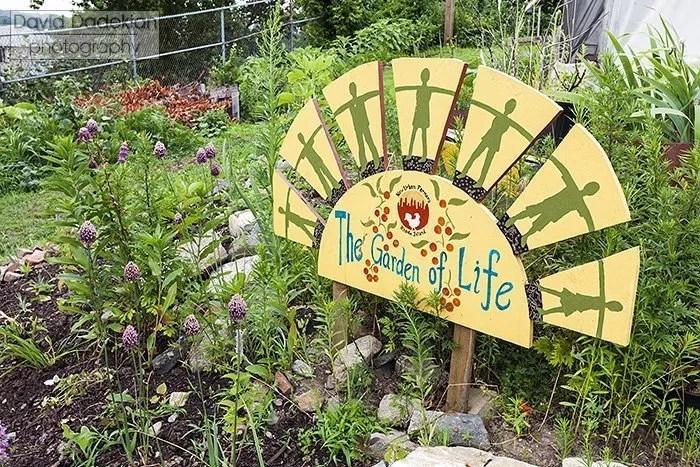 New Urban Farmers The Garden of Life