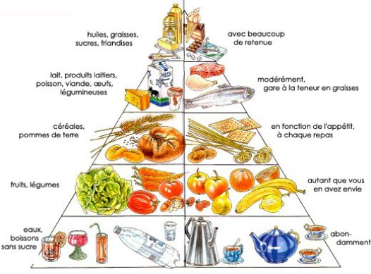 The French Food Pyramid Eat Energize Expect