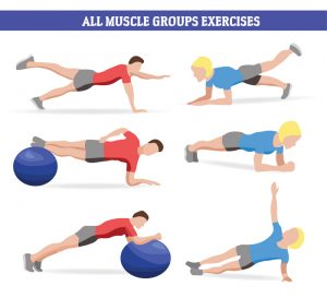 Muscle Groups Exercises to Accelerate Weight Loss