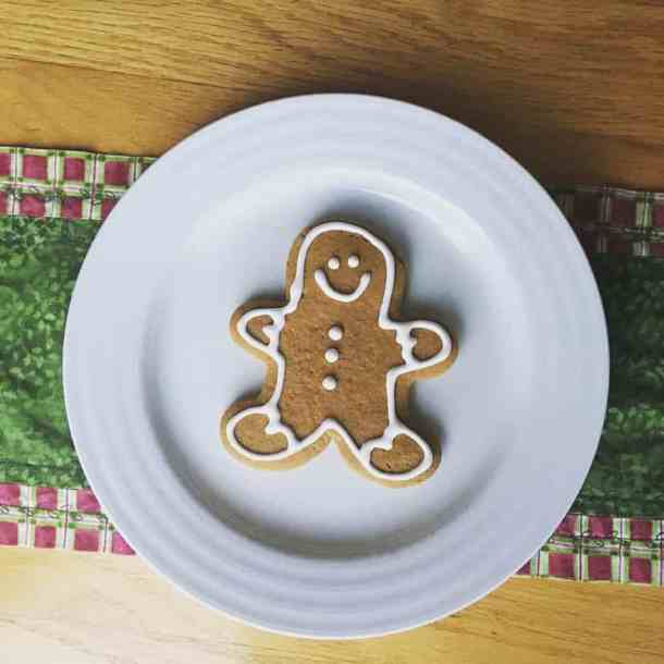 allergy free gingerbread