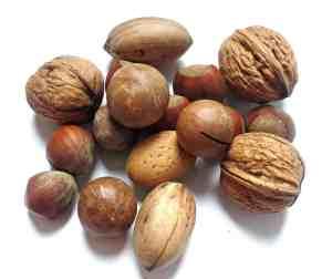 tree nut allergy