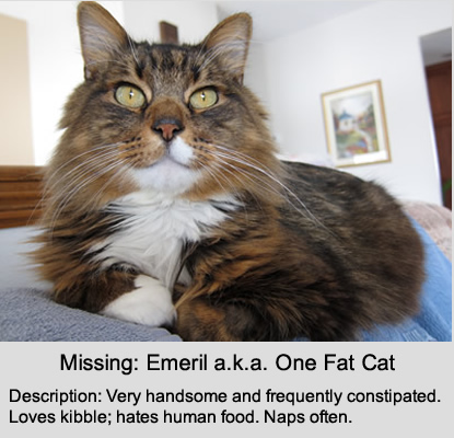 emeril: missing