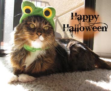 Emeril Halloween