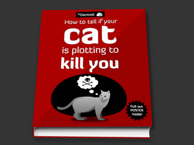 How To Tell If Your Cat Is Plotting To Kill You Eat Laugh Purr