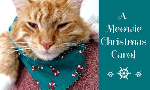 A Meowie Christmas Carol