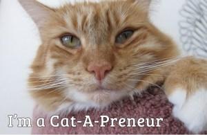Max is a cat-a-preneur!