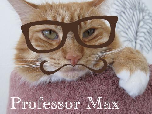 Professor Max