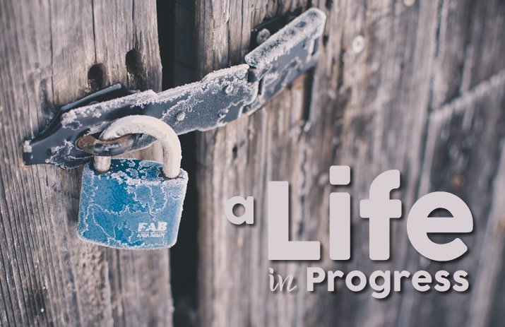 A Life In Progress | www.EatLaughPurr.com