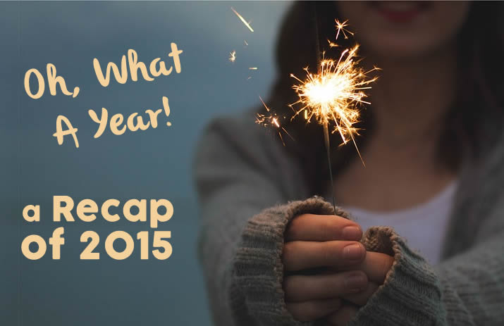 Oh What a Year! A Recap of 2015