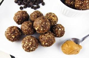 Chocolate Peanut Butter Protein Bite