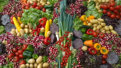 Wide Variety of Colorful Vegetable and Fruits