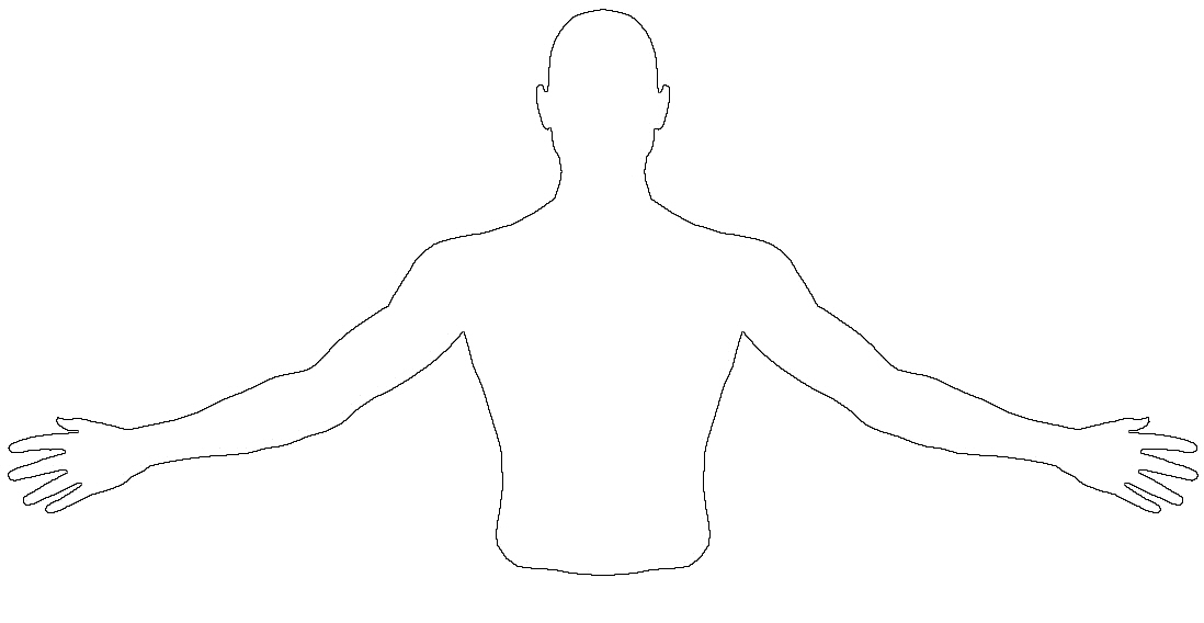 Diagrams of the upper extremities and torso
