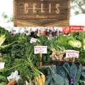 Green Market Celis