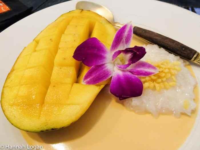 Mango sticky rice: yum!