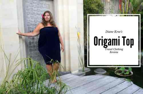 Diane Kroe Origami Top