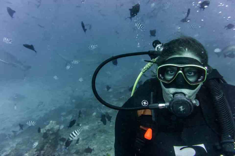 Beqa Shark Dive