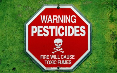 USDA Report – Pesticide Residue Nothing to Fear