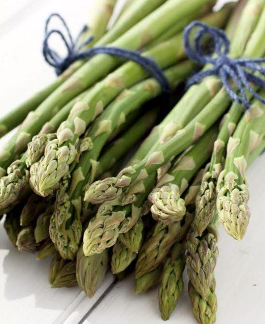 What Freeze Way Fresh Zucchini Best
