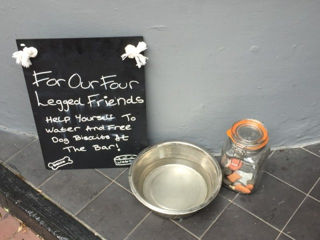 The quirky dog bowl at Pom's, Lichfield
