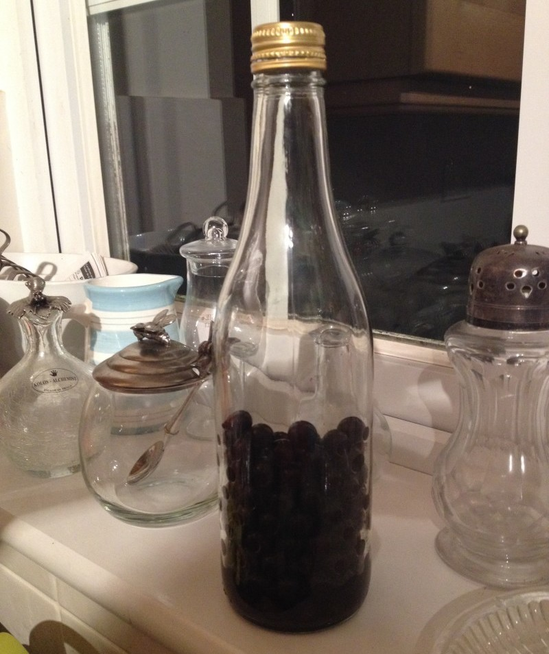 Sloes waiting for the gin