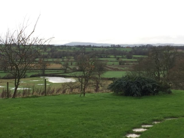 The view from Lake Farm shepherds hut