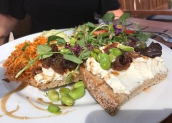 Goats cheese & ricotta at Vineyard Cafe, Sharpham, Devon