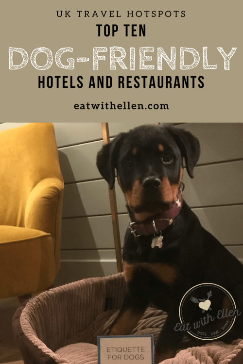 Top ten dog-friendly hotels and restaurants