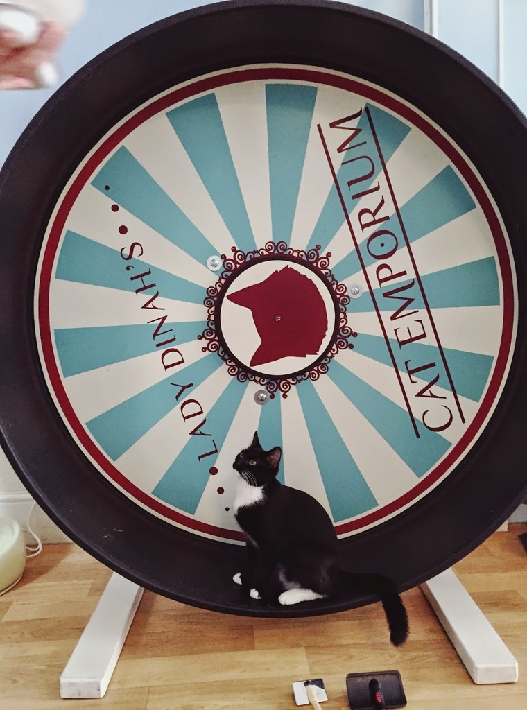 Lady Dinah's Cat Emporium Wheel