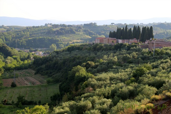 Siena hillside views 2