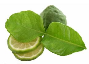 Kaffir lime leaf