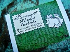 pirouette Midnight Gardenia