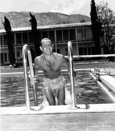 alan_ladd_pool2