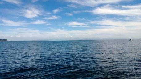 august_sea