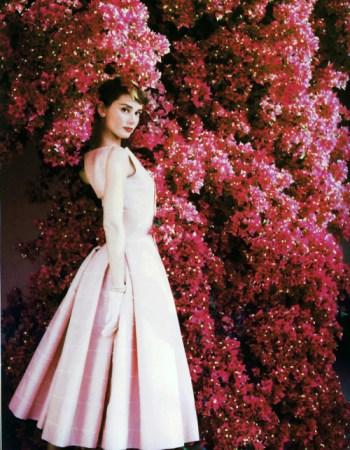Audrey Hepburn flowers
