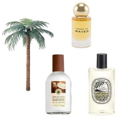 Summer Beach Perfumes