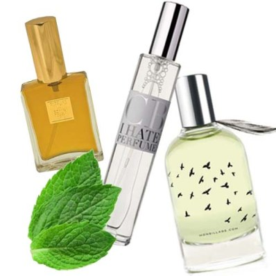Fresh summer scents