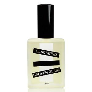Blackbird Broken Glass