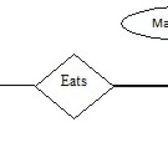 Er Model Diagram In Dbms 1971 Bmw 2002 Wiring Entity Relationship Eazynotes How To Prepare An Erd