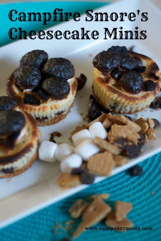 campfire smore's cheesecake minis
