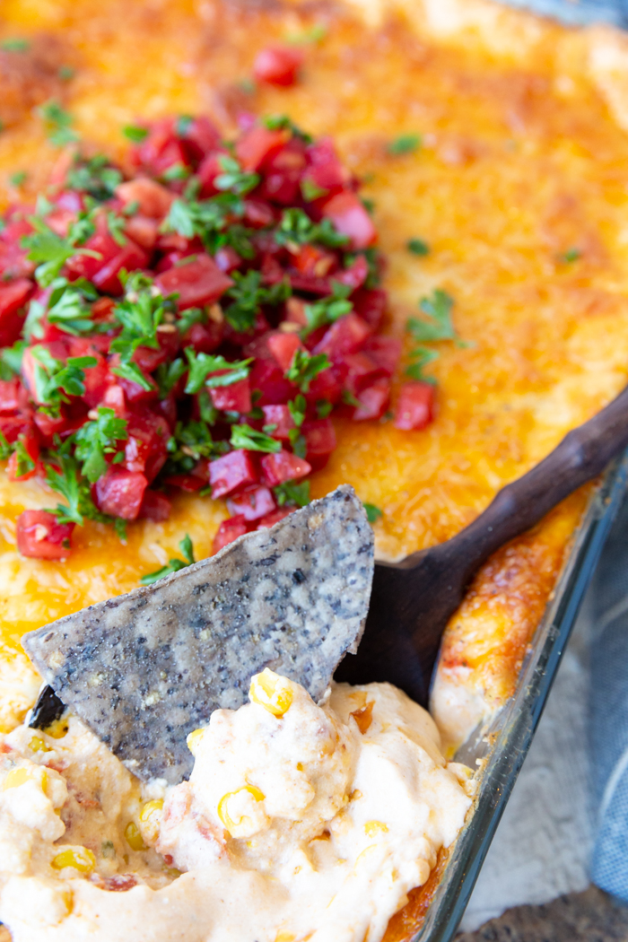 Cheesy corn dip in a big casserole dish, with tortilla chips, topped with tomatoes and cilantro.