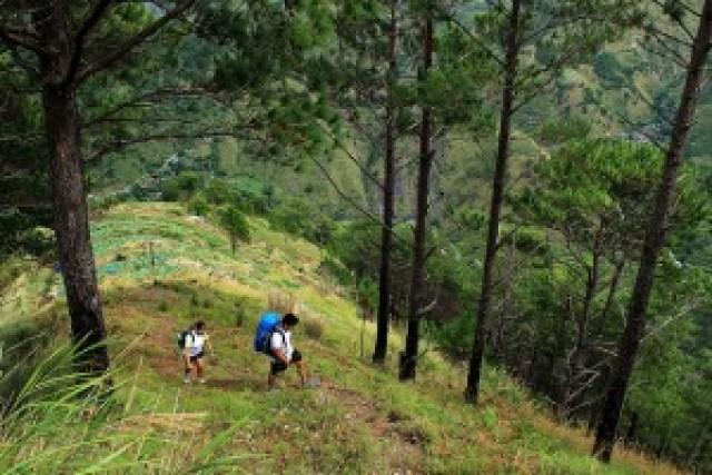 Mt. Timbac Hike