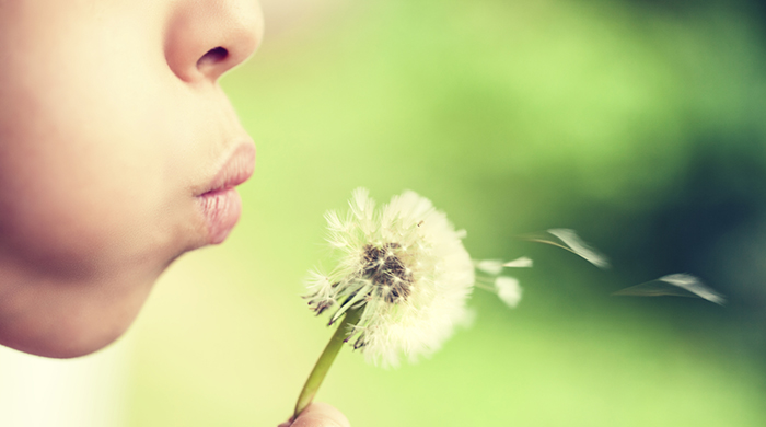 How to Get Major Relief From Spring Allergies