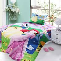 Twin Size Girls Princess Bed Set