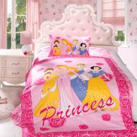 Disney Princess Bedding Set Twin Size | EBeddingSets