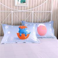3D Dinosaur Print Bedding Set Twin Queen Size BWL
