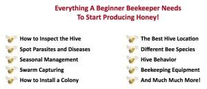 Beekeeping 101 course