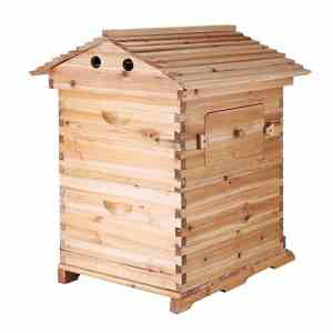 Vevor Beehive - How to start a bee hive