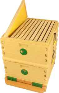 Apimaye 10 Frame Langstroth Plastic Beehive Nuc with Handyframes